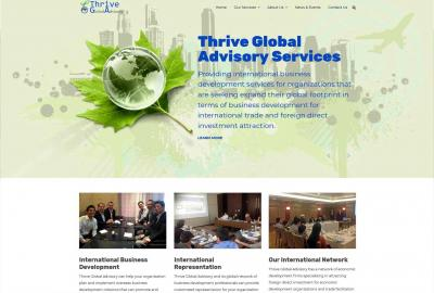 Thrive Global Advisory